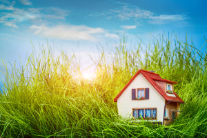 Should I get a Home Warranty Plan When Purchasing my Los Angeles Home?