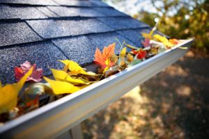 Five Tips for Safely Cleaning Your Rain Gutters