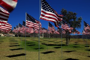 Honoring those who served on this Memorial Day